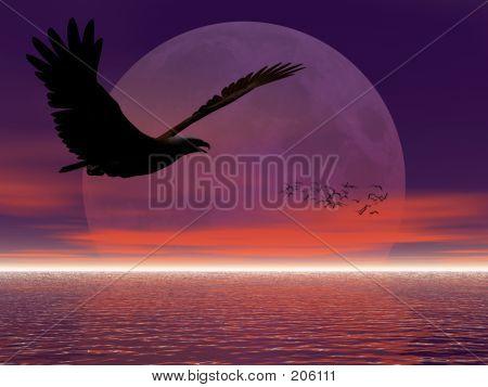 Adler gegen Moon.
