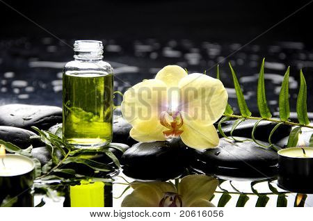 Spa still life with bottle of essential oil and fern with orchid