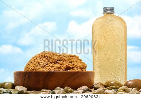 Natural Sponge And Liquid Soap Bottle