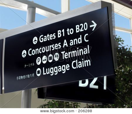 Coger el vuelo
