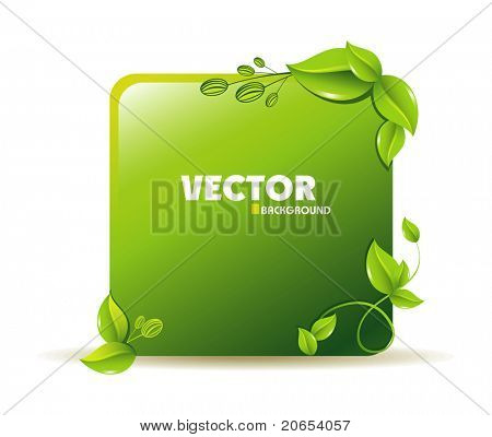 Vector Ecodesign