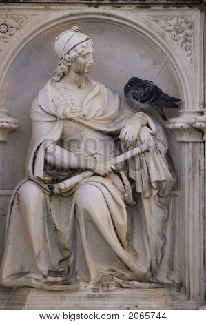 Detail Of Fonte Gaia With Pigeon