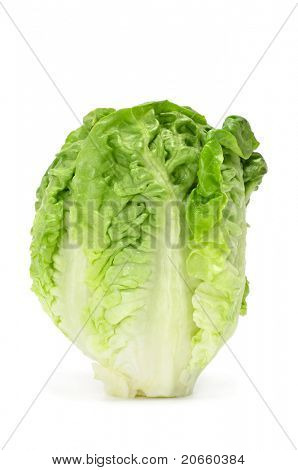 a lettuce heart on a white background