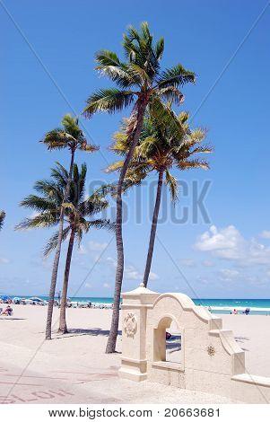 The Beach at Hollywood,Florida