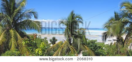 Sand Bank And Palm Trees, Nosy Iranja, Nosy Be Island, Panoramique, Madagascar