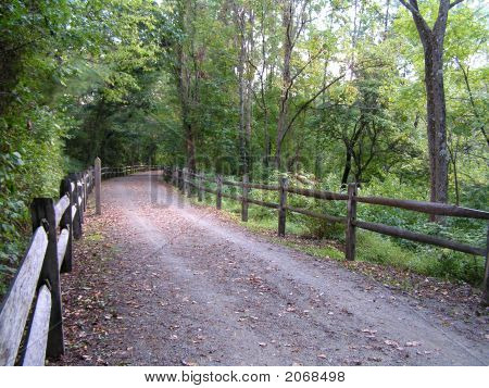 Bike Path On A Summer Day