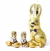 stock photo of easter bunnies  - Easter chocolate rabbit  - JPG