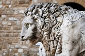 Medieval sculpture of a lion at Piazza della Signoria, a symbol of the city of Florence in Italy poster