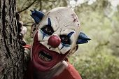 closeup of a scary evil clown wearing a dirty costume, popping in from behind a tree in the woods poster