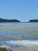 foto of quicksand  - Water glistening at low tide on a sunny afternoon