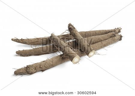 Fresh Burdock roots on white background