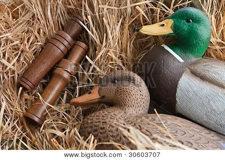 Duck Decoy With Stuffed And Calls