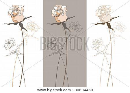 Vintage schöne rose