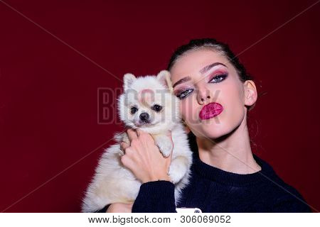 poster of Woman And Dog. Love To Animals. Sexy Girl Hugs Little Dog. Adorable Girl With Small Cute Dog. Woman