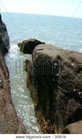 A Fissure Between Rocks