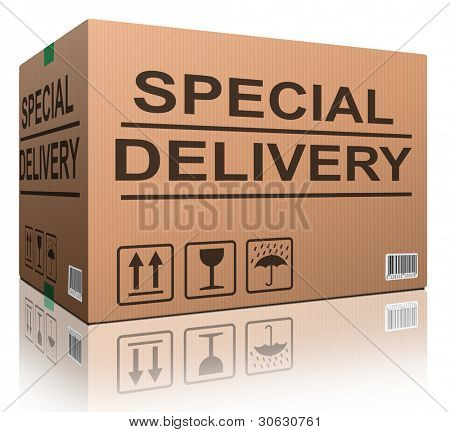 special delivery important shipment special package sending express shipping cardboard box isolated and with text internet shopping concept icon