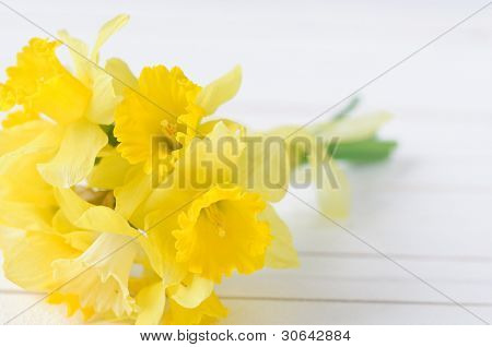 bouqut of yellow lent lilyl (daffodil) on white wooden background
