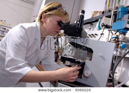 Arbeit im Labor