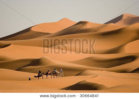 Camel trekking at Morocco