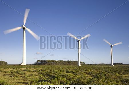 Wind turbines farm generating clean electricity over plain land. Alternative energy source