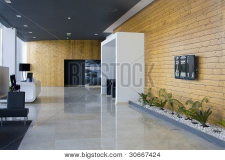 Decorated and modern architecture interior - corporate and luxury concept