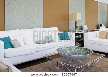 Contemporary living room with elegant designed furniture (empty interior)