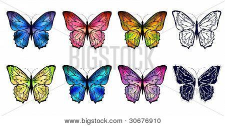 Schmetterling-Gruppe