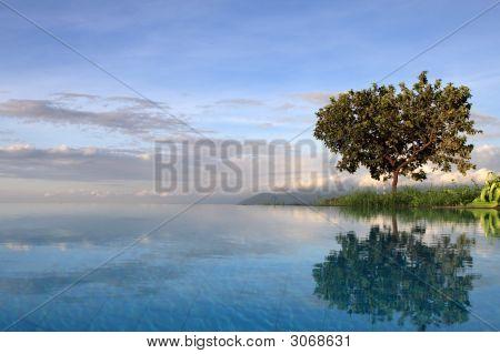 Pool At Lake Manyara Tanzania