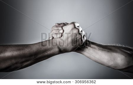 poster of Handshake, Arms. Friendly Handshake, Friends Greeting. Rescue, Helping Hand. Male Hand United In Han