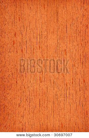 Cedar (wood texture)