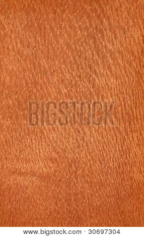 Lacewood (wood texture)