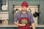 Culinary Recipe. Chef Cooking Vegetarian Recipe. Vegetarian Cuisine Rich Vitamins. Man Chef Wear Apr poster