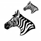 Zebra Head Icon, Wild African Animal Muzzle. Vector Outline Zebra Horse Head Symbol Of Sport Team Ma poster