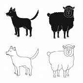 Vector Design Of Breeding And Kitchen  Symbol. Collection Of Breeding And Organic  Stock Vector Illu poster