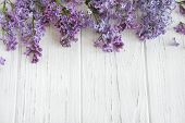 Frame For A Banner Of Lilac Flowers On A White Wooden Background. Background With Spring Flowers. Ba poster