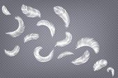 Realistic Feathers. Fluffy White Goose And Swan Different Falling Fluffy Twirled Feather, Weightless poster