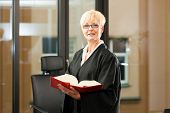 stock photo of court room  - Female lawyer with German civil law code  - JPG