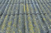 Roof Of A Country House, Covered With Gray Slate, Close-up. Old Roof Covered With Slate. Green Moss  poster