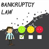 Text Sign Showing Bankruptcy Law. Conceptual Photo Designed To Help Creditor In Getting The Asset Of poster