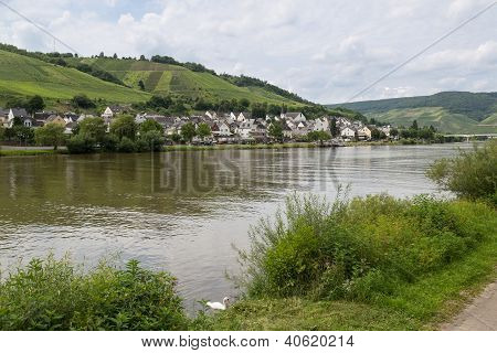 German River Moselle With View At Village Zell