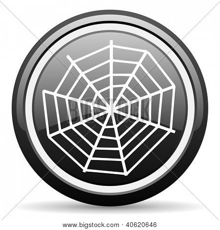 spider web black glossy icon on white background