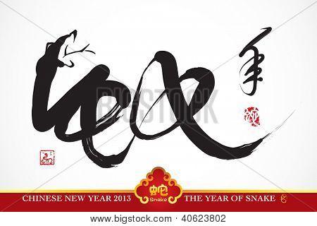 Snake Calligraphy, Chinese New Year 2013 Translation: Snake Year