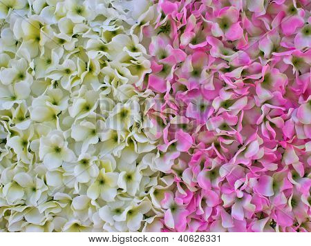 Abstract Texture Of Plastic White And Pink Flowers.