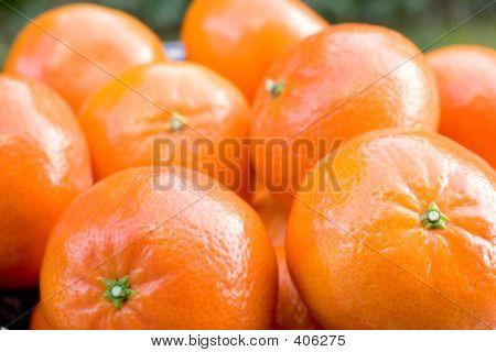 Eine Schale mit Clementine Mandarinen 2