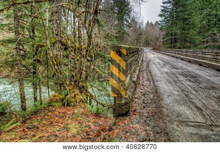 Wooden Bridge On Secluded Logging Road