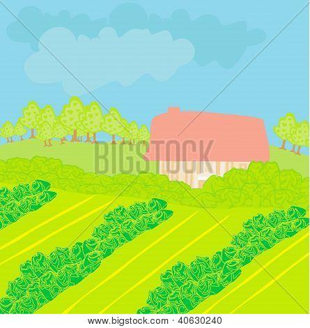 Vector Landscape - Farm And Fields