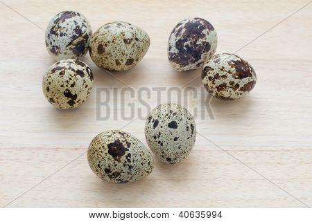 Seven Quail Eggs
