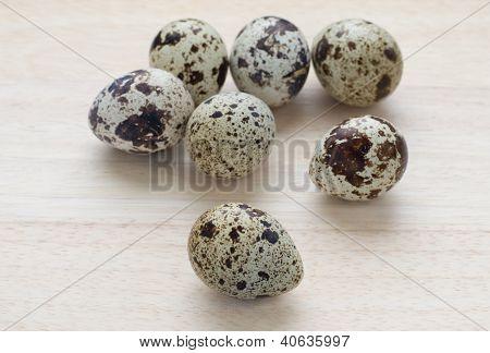 Seven Small Quail Eggs