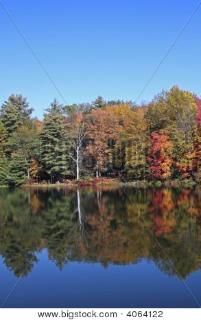 Autumn Lake Shore Scene