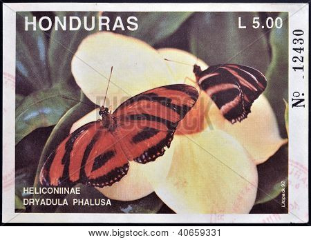 HONDURAS - CIRCA 1992: A stamp printed in Honduras shows butterfly Heliconiinae Dryadula Phalusa